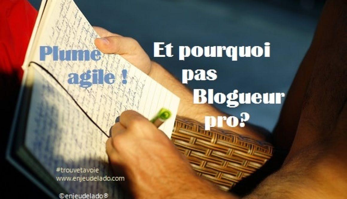 Avent Enjeu de l'ado Blogueur 18 déc 2016